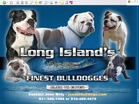 Long Island's Finest Bulldogges
