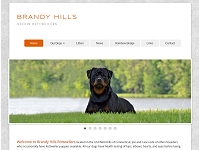 Brandy Hill Rottweilers