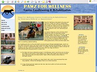 Pawz For Wellness - Canine Conditioning & Rehabilitation
